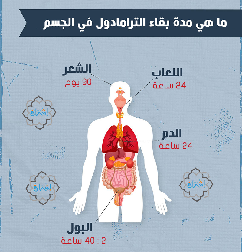 مدة بقاء الترامادول في الجسم
